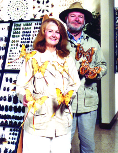 Pictured are Margaret and Richard Whitten clothed in specimens from their collections. The yellow tailed specimens on the left are Argema Mitrei, comet moths from Madagascar (now known as Malagasy Republic). The brown months are Attacus Atlas moths – the world's largest moths from the Philippines.